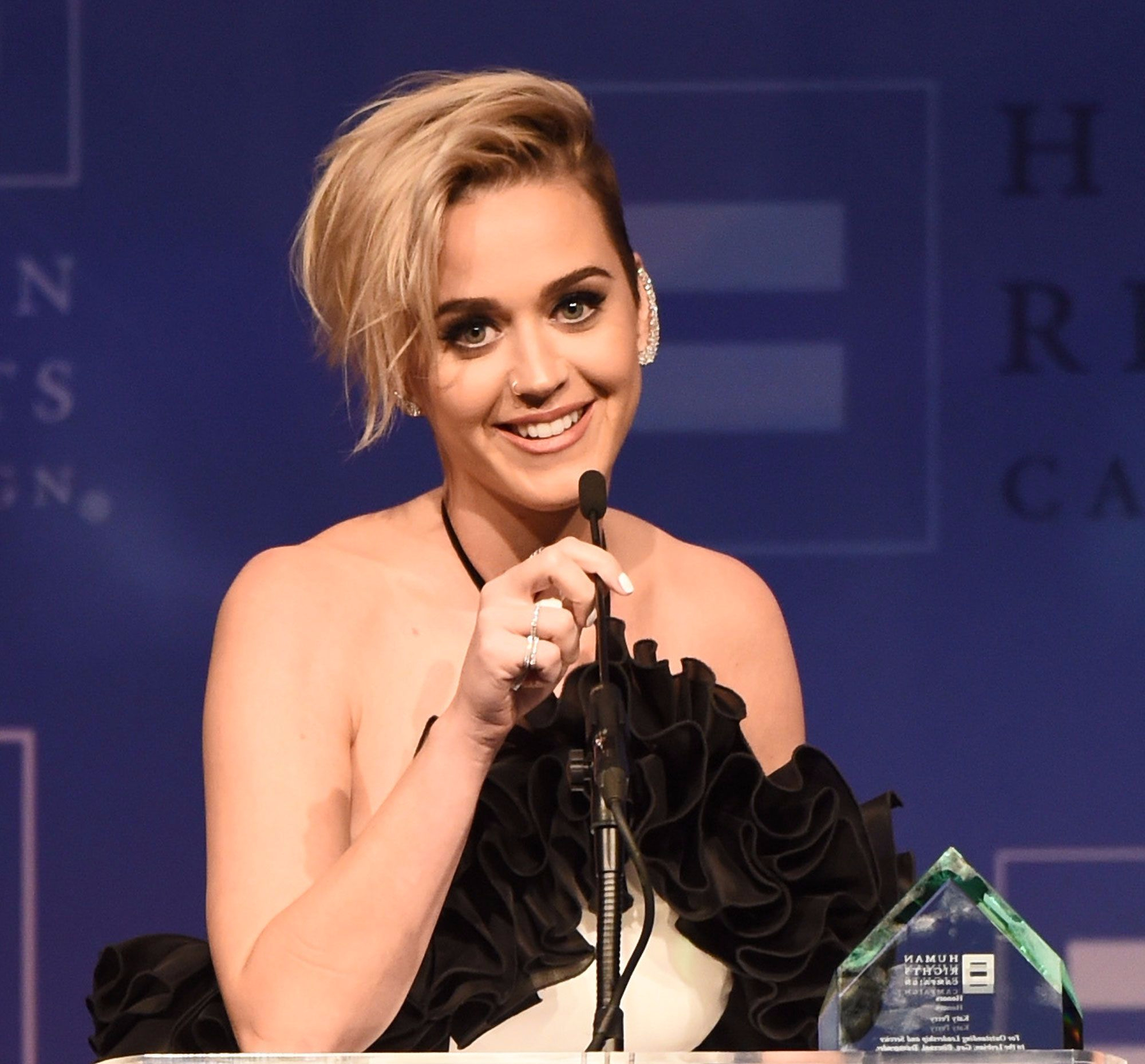 Katy Perry   Human Rights Campaign   Los Angeles Gala