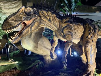 Jurassic Quest Dinosaurs 3